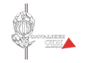 https://www.cavalierigin.com